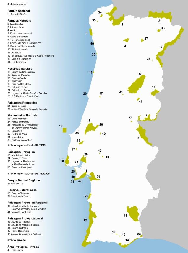 Mapa RNAP