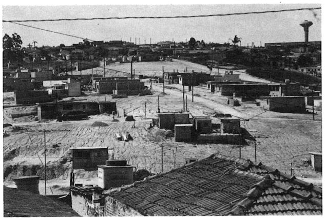Jardim_das_camelias_1980_CUT