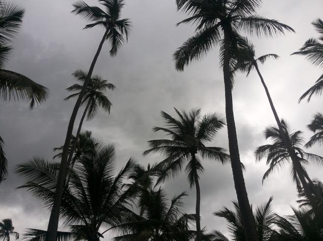 beach-1669854_960_720